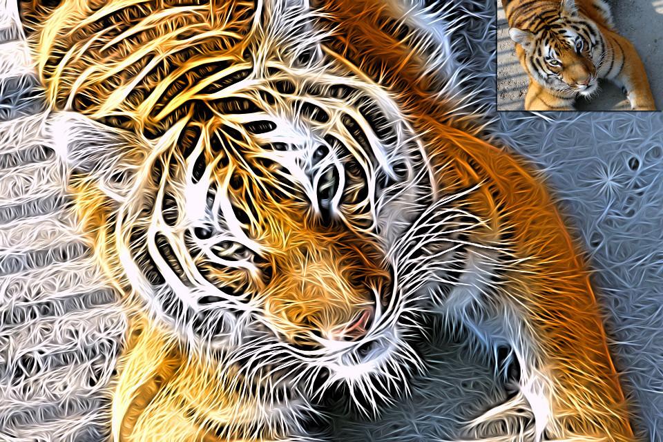 http://www.orangeqube.com/tangledfx/images/1f.jpg